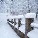 東京近郊で今年初の雪!雪!そんでもって雪!!