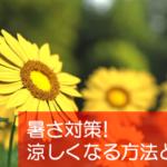 【豆知識】知っておくと便利!夏に涼しくする4つの暑さ対策